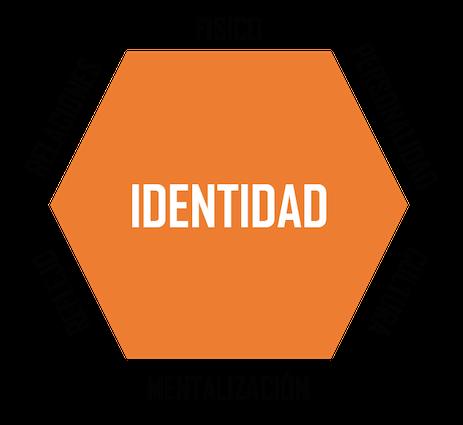Identidad de marca